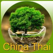 ChinaThai