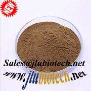 Lingzhi Extract Oil Softgel Reishi Mushroom Extract sales@jlubio