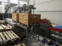 Машина для сортировки и упаковки яблок