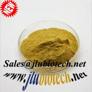 Natural China Origin Cactus Powder Extract for Weight Loss sales