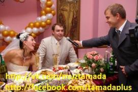 Тамада и музыка, ди джей, живой вокал в Киеве. Свадьба Киев