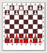 "The chess wall, demonstration Board ""chess / checkers"", about"