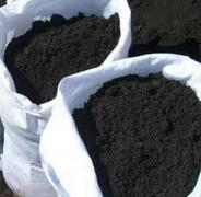 The vegetable soil, black earth
